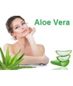 Luxe Aloe 70x190 Matelas Mousse Poli Lattex + Oreiller à valeur 89 €
